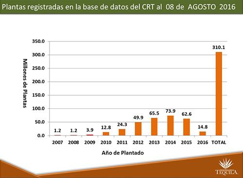 Agave registrado CRT