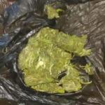 Marihuana La Piedad