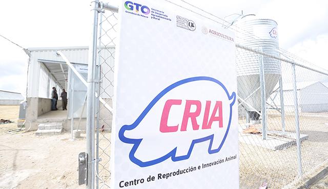 Centro de Reproducción e Innovación Animal