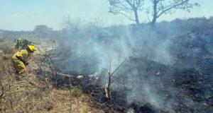 incendio Cerro Grande