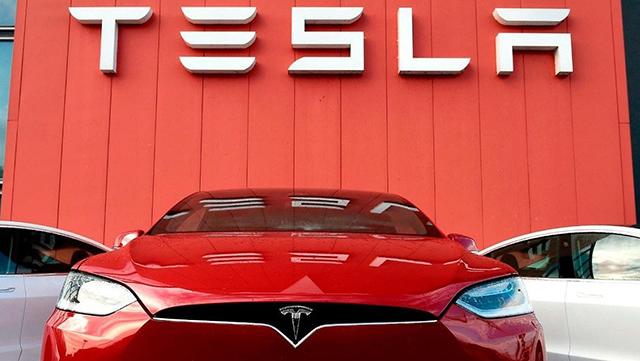 Tesla Guanajuato Elon Musk