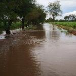 arroyos Pénjamo inundaciones