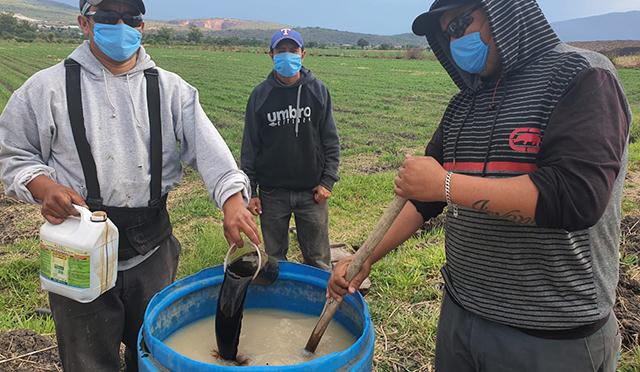 Ucacuaro Ecuandureo Agricultura Sustentable