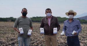 herbicidas La Piedad