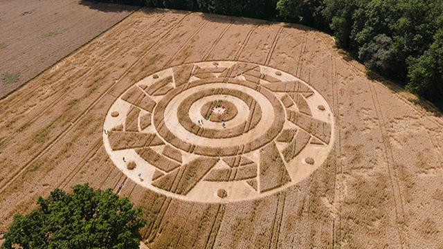 círculo en campo de cultivo