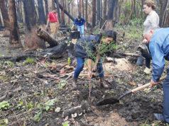 Reforestacion Ciénega Ayotlan Degollado