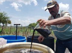 Tarimoro Tanhuato Agricultura Sustentable
