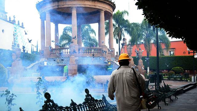 mosquito fumigación La Piedad plaza