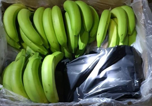 plátanos con cocaína 1