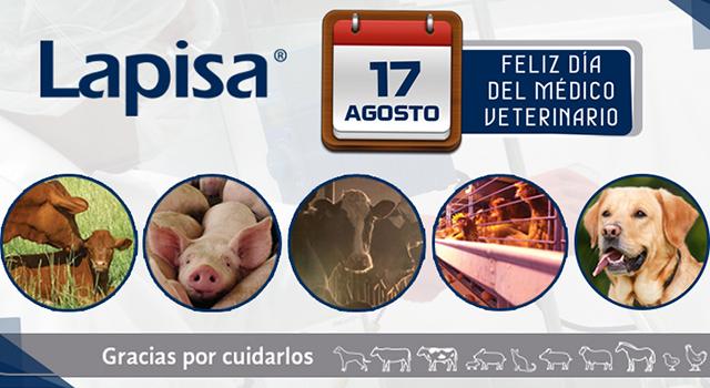 veterinarios 17 de agosto