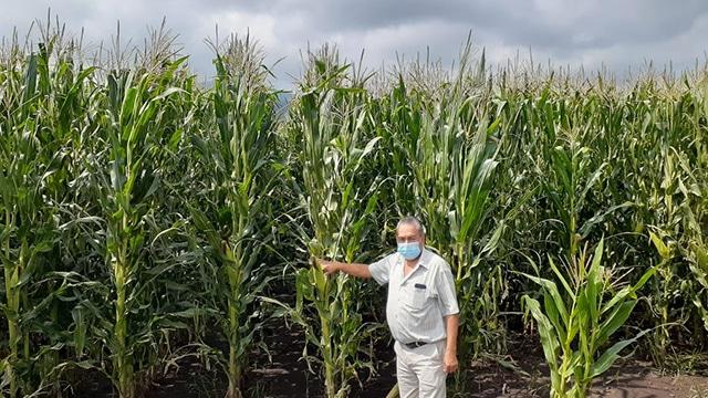Huapamacato Agricultura sustentable
