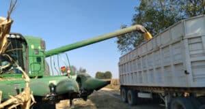 Numarán SEDRUA agricultura sustentable
