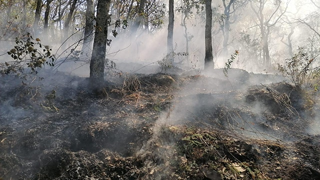 incendio forestal Cerro Grande Ecuandureo