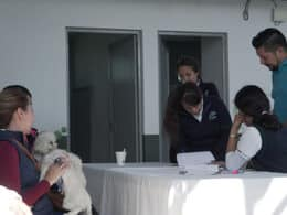 canino control La Piedad